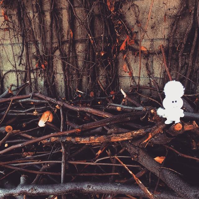 リフレッシュメント ソフビFAiRY CottonCandy fairy wacchan